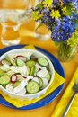 Spring salad from young vegetables Royalty Free Stock Photo