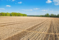 Spring scene footpath across a plowed field Royalty Free Stock Photography