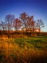 Spring Season Natural Landscape