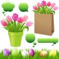 Spring Set. Vector Royalty Free Stock Photo