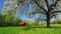 Jar na Slovensku