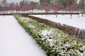 Spring snow the paring garden covered whith Stock Photography