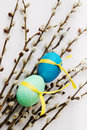 Spring still life passover holiday pussy willow and eggs with ribbon Royalty Free Stock Image