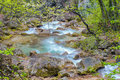 Spring stream Royalty Free Stock Photo
