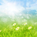 Spring or summer abstract background with bokeh Royalty Free Stock Photos