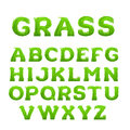 Spring, summer alphabet made of grass. Early spring green grass font.