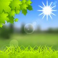 Spring and summer background gradient mesh vibrant shiny vector Royalty Free Stock Photos