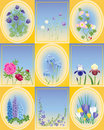 Spring and summer flowers Royalty Free Stock Images