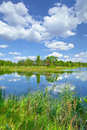 Spring summer landscape blue sky clouds river pond green trees Royalty Free Stock Photo
