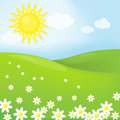 Spring sunny landscape vector with flowers Stock Photos