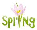 Spring text with flower Stock Image