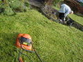 Spring tidy up in the garden cutting grass pulling weeds Royalty Free Stock Image