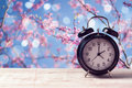 Spring time change concept with alarm clock over nature tree blossom Royalty Free Stock Photo
