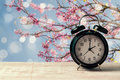 Spring time change concept with alarm clock on wooden table over nature tree blossom Royalty Free Stock Photo