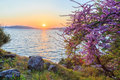 Spring time with sunset near hisaronu area in Marmaris
