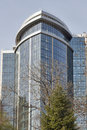 Spring tree and hotel Hilton in Kiev, Ukraine.
