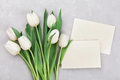Spring tulip flowers and paper card on gray stone table top view in flat lay style. Greeting for Womens or Mothers Day. Royalty Free Stock Photo
