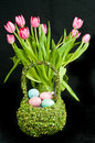 Spring tulips and basket of colored eggs Royalty Free Stock Photo