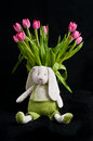 Spring tulips and and Peter Cotton tail rabbit Royalty Free Stock Photo