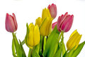 Spring tulips red and yellow bund of fresh in a vase Royalty Free Stock Photography