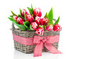 Spring tulips in wooden basket Stock Photography