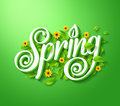 Spring typography title concept in d with long shadow decorated flying leaves and flowers green background realistic Royalty Free Stock Image