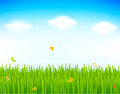 Spring vector background illustration Royalty Free Stock Images