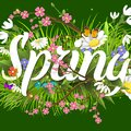 Spring vector text lettering background with flower floral green text letter ornament beautiful calligraphy flower hello Royalty Free Stock Photo