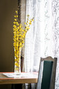 Spring yellow flowers in vase Royalty Free Stock Photo