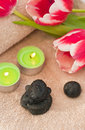 Spring zen-like spa Royalty Free Stock Photo
