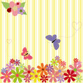 Springtime flowers & butterflies on yellow stripe Stock Photos
