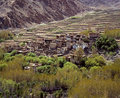 Springtime in Gompa, Ladakh Royalty Free Stock Photography