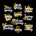 Springtime Hand Drawn Quotes