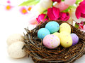Springtime nest Royalty Free Stock Photos
