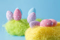 Springtime nest with colorful Easter Eggs against blue backgroun Royalty Free Stock Photo