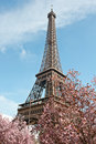 Springtime in Paris Stock Photos