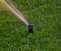SPRINKLER IN THE GARDEN Royalty Free Stock Photo
