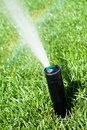 Sprinkler grass automatic watering closeup Royalty Free Stock Photos