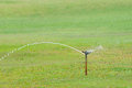 Sprinkler spraying water on the grass Stock Photo