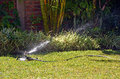 Sprinkler watering lawn Stock Images