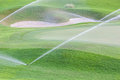 Sprinklers watering system working in green golf course. Royalty Free Stock Photo