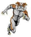 Sprinting tough bulldog mascot an illustration of a or character Royalty Free Stock Photo