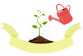 The sprout is watered with water from the watering can.Vector