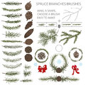 Spruce branches brushes set with Pine cones and Royalty Free Stock Photo