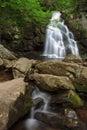 Spruce Flats Waterfall Royalty Free Stock Photo