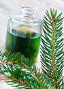 Spruce needle oil healthy and plant Stock Photo