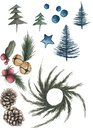 Spruces, branches, pine cones, red berries and bells on the white background.
