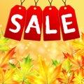 Sprzedaż jesień Obrazy Stock