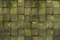 Square brick with the moss on top Royalty Free Stock Photo
