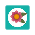 Square button with blossom and leaves
